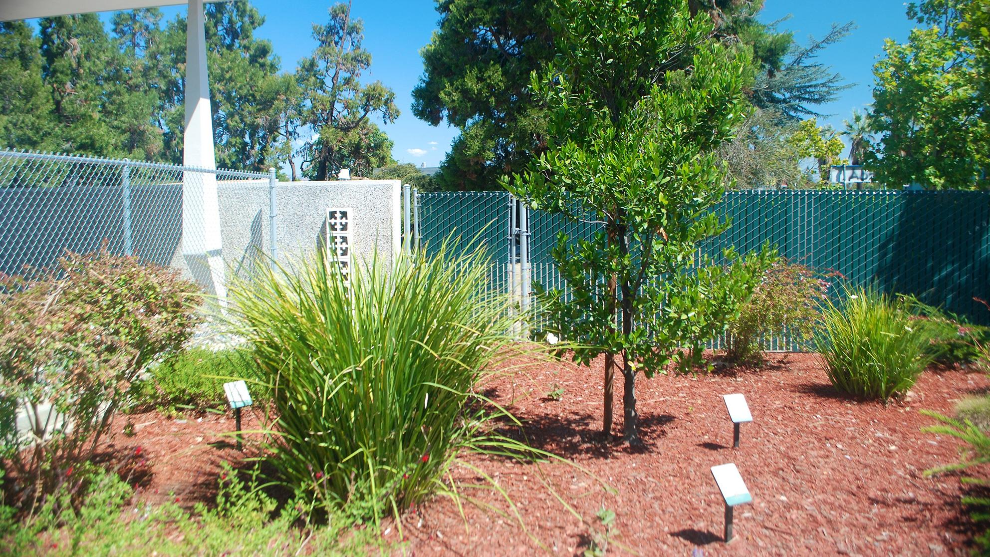 Image Of The San Jose Water Demonstration Garden