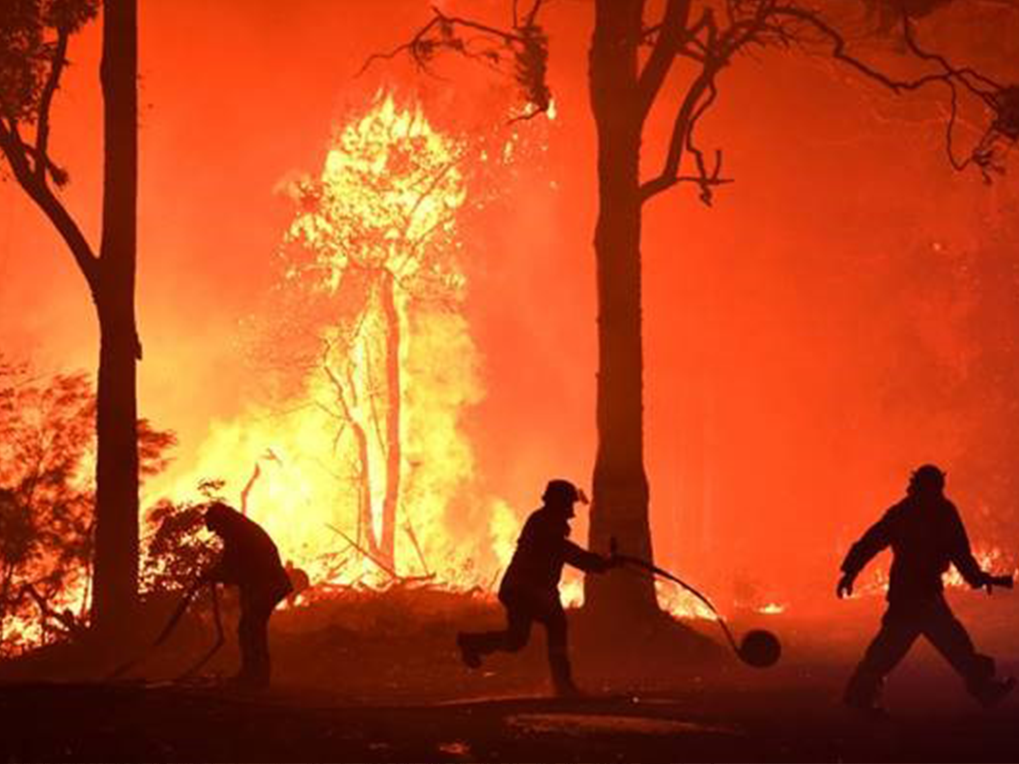 Australian Firefighters battling a blaze. Photo provided by PBS.org.
