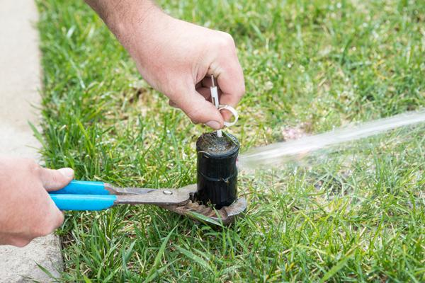 Closeup of someone using pliers to check a water sprinkler in the grass