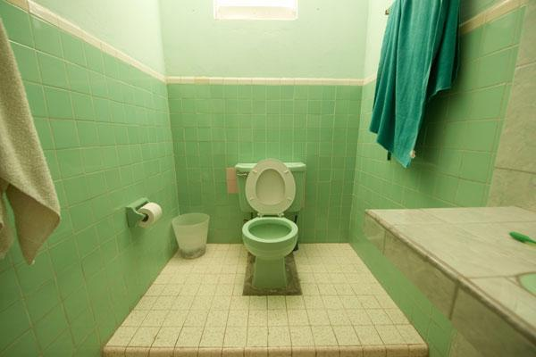 Green bathroom with toilet